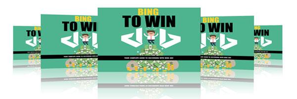 bing-ads-success